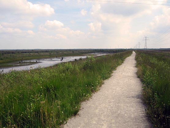 Wege durch das Moor