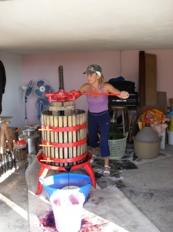 Weinpresse Kalabrien